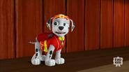 Pup-Fu!73(Marshall)
