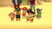 PAW.Patrol.S01E26.Pups.and.the.Pirate.Treasure.720p.WEBRip.x264.AAC 1211410