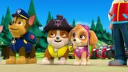 PAW.Patrol.S01E26.Pups.and.the.Pirate.Treasure.720p.WEBRip.x264.AAC 767333