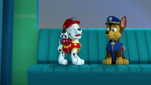 File:PAW.Patrol.S02E07.The.New.Pup.720p.WEBRip.x264.AAC 222823.jpg