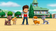 PAW Patrol Air Pups Ryder Rubble Rocky Zuma Skye
