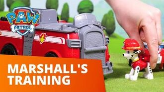 PAW Patrol Marshall's Training Toy Episode