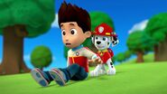 PAW.Patrol.S01E26.Pups.and.the.Pirate.Treasure.720p.WEBRip.x264.AAC 1043109