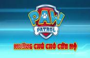 PAW Patrol Vietnamese Title 01