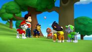 PAW.Patrol.S01E26.Pups.and.the.Pirate.Treasure.720p.WEBRip.x264.AAC 927493