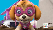 PAW Patrol Pups Save a Flying Kitty 35