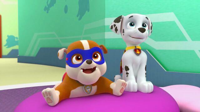 File:PAW.Patrol.S02E03.Pups.Save.Jake.-.Pups.Save.the.Parade.720p.WEBRip.x264.AAC 51385.jpg