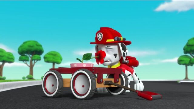 File:PAW Patrol Pups Save the Songbirds Scene 11.jpg