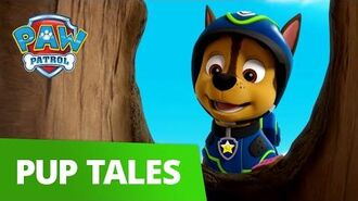 PAW Patrol Pups Save Luke Stars Rescue Episode PAW Patrol Official & Friends!