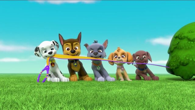 File:PAW Patrol Pups Save a Goldrush Scene 5.jpg