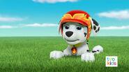 PAW Patrol Pups Save a Satellite Scene 13