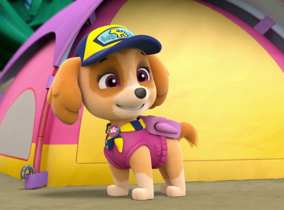 Skye Paw Patrol Wiki Fandom Powered By Wikia