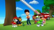 PAW.Patrol.S01E26.Pups.and.the.Pirate.Treasure.720p.WEBRip.x264.AAC 972071