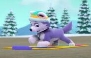 Husky boogie