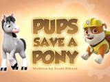 Pups Save a Pony