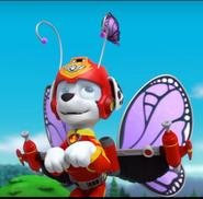 Marshall Pupafly