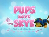 Pups Save Skye