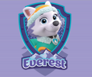 Everest badge