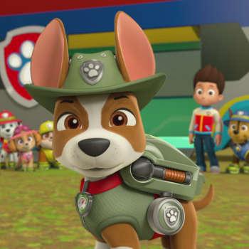 File:315-tracker-the-jungle-pup-1x1.jpg
