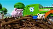 Little Pigs 49