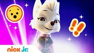 Top 5 Countdown 🐩Sweetie's Most Mischievous Moments PAW Patrol Mission PAW Nick Jr.