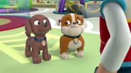 PAW.Patrol.S01E16.Pups.Save.Christmas.720p.WEBRip.x264.AAC 242542