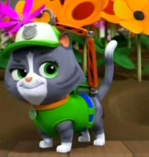 Cat Rocky Trivia Paw Patrol Wiki Fandom Powered By Wikia