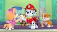 Nick jr buddy like you song marshall skye chase zuma rubble