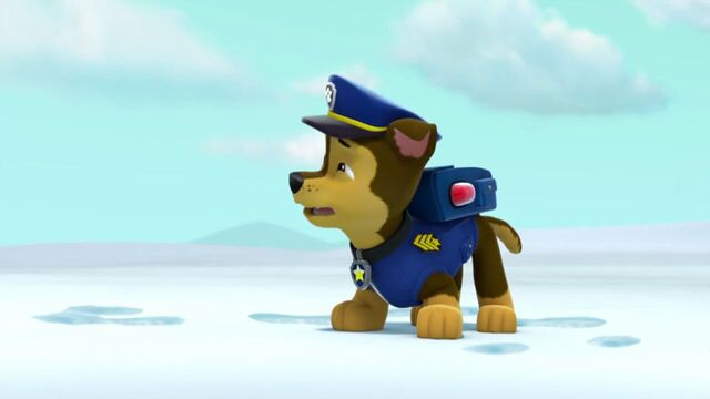 File:PAW.Patrol.S02E07.The.New.Pup.720p.WEBRip.x264.AAC 851284.jpg