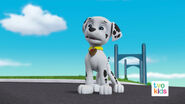 PAW Patrol Pups Save a Flying Kitty 16