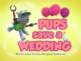 Pups Save a Wedding