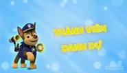 Những chú chó cứu hộ Thanh viên danh dự