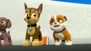 PAW.Patrol.S01E26.Pups.and.the.Pirate.Treasure.720p.WEBRip.x264.AAC 131932