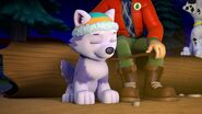 PAW.Patrol.S02E07.The.New.Pup.720p.WEBRip.x264.AAC 1290790