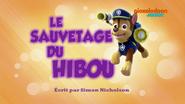 PAW Patrol La Pat' Patrouille Le Sauvetage du hibou