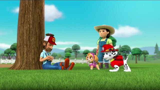 File:PAW Patrol Pups Save the Songbirds Scene 35.jpg