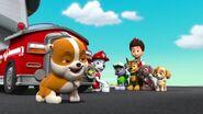 PAW Patrol Season 2 Episode 10 Pups Save a Talent Show - Pups Save the Corn Roast 224257