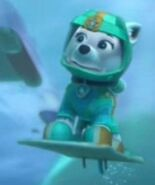 Sea Pup Everest underwater