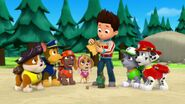 PAW.Patrol.S01E26.Pups.and.the.Pirate.Treasure.720p.WEBRip.x264.AAC 807206