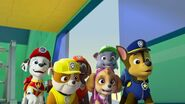 PAW.Patrol.S02E07.The.New.Pup.720p.WEBRip.x264.AAC 170771