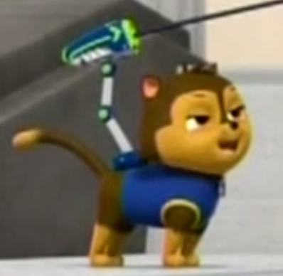 File:Cat Chase.png