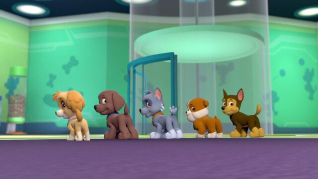 File:PAW.Patrol.S01E21.Pups.Save.the.Easter.Egg.Hunt.720p.WEBRip.x264.AAC 197464.jpg