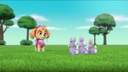 PAW Patrol Pups Save the Songbirds Scene 22