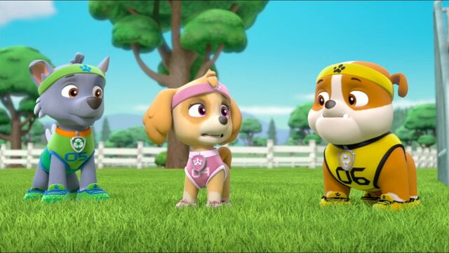 File:All Star Pups! 25.jpg