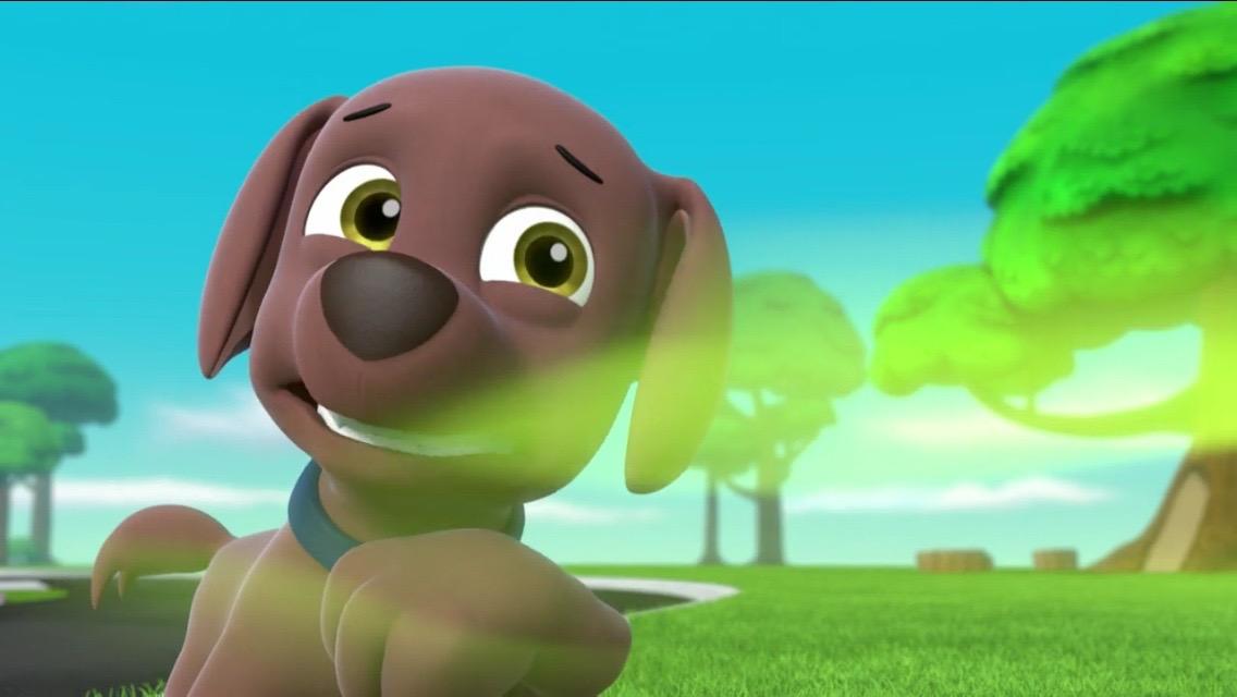 Zuma Gallery Pups Save A Stinky Fower Paw Patrol Wiki