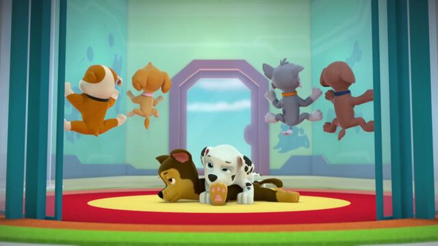 File:PAW.Patrol.S02E02.Pups.Save.the.Penguins.-.Pups.Save.a.Dolphin.Pup.720p.WEBRip.x264.AAC.mp4 000163363.jpg