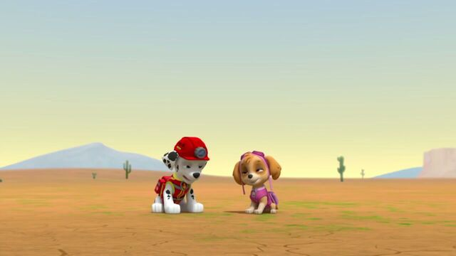 File:PAW.Patrol.S02E07.The.New.Pup.720p.WEBRip.x264.AAC 65566.jpg