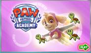 PPAcademy7