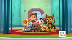 PAW Patrol Pups Save a Playful Dragon 12