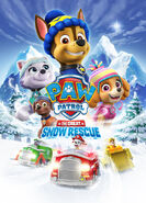 Paw Patrol Great Snow Escape DVD